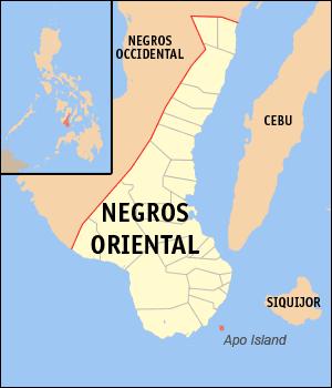 Locatie Apo Island - Negros Oriental, Central Visayas, Filipijnen