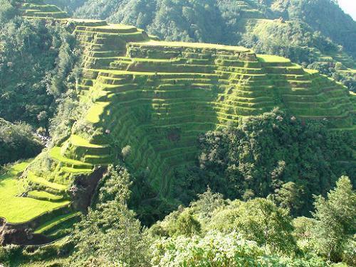Uitzichtpunt rijstterrassen Banaue (Banaue View Point), Luzon, Filipijnen