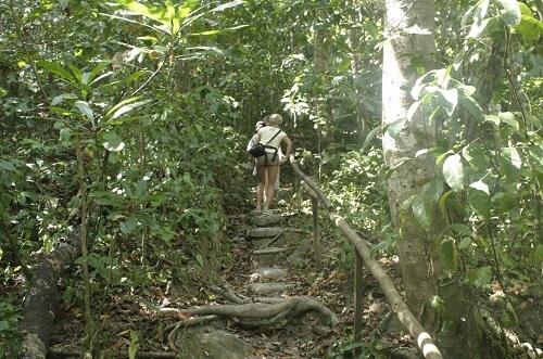 Jungle trekking in het Puerto Princesa Subterranean River National Park - Palawan, Filipijnen